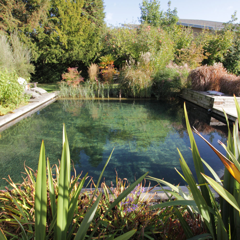 Aquascapes 360 Landscaping & Property Services